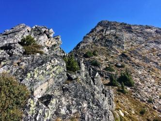 Navigating false summits